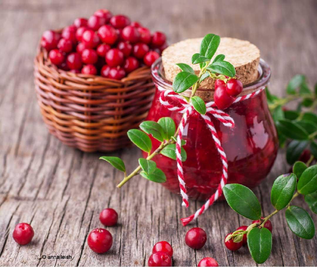 cranberry salsa powerbeere mit vitamin c viele rezepte sidco. Black Bedroom Furniture Sets. Home Design Ideas