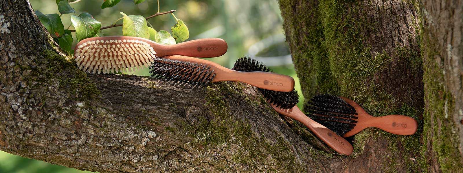 Haarbürsten