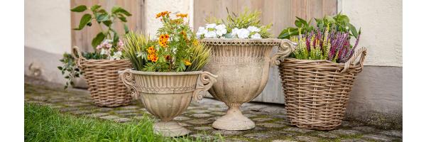 Blumentöpfe & Pflanzer