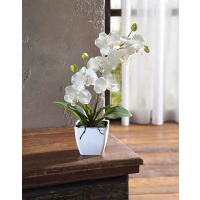Deko-Orchidee im Topf