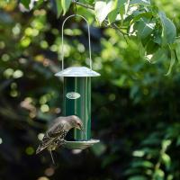 Vogelfuttersilo grün
