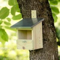 Vogelhaus Kleinvögel