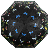 Regenschirm Farbwechsel Vögel