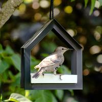 Vogelfutterstation anthrazit