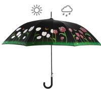 Regenschirm Farbwechsel Tulpe